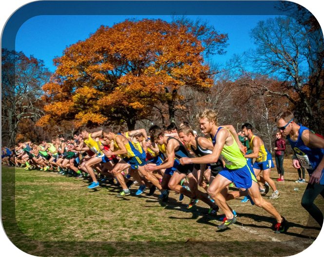 "An Ode to Cross Country: ""The Line"""